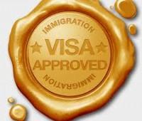 Правительство одобрило 850 Золотых Виз за период чуть больше месяца.